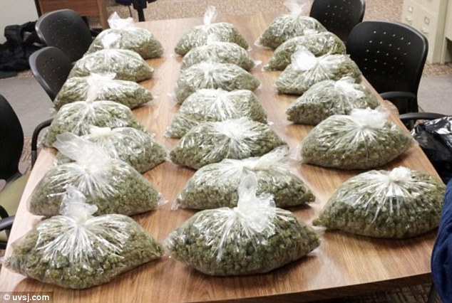 20-lbs-weed